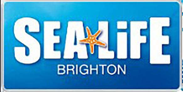 Brighton 2010 logoSmall 300x300